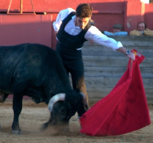 Alexander Fiske-Harrison bullfighting (Photo: Nicolás Haro)