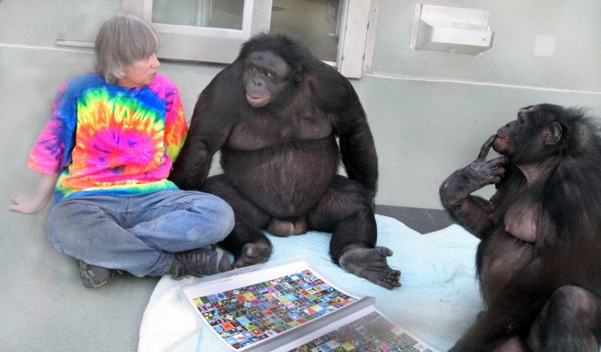Sue Savage-Rumbaugh undergoing language research with bonobos Kanzi and Panbanisha (By Wcalvin - Own work, CC BY-SA 4.0, https://commons.wikimedia.org/w/index.php?curid=49108463)
