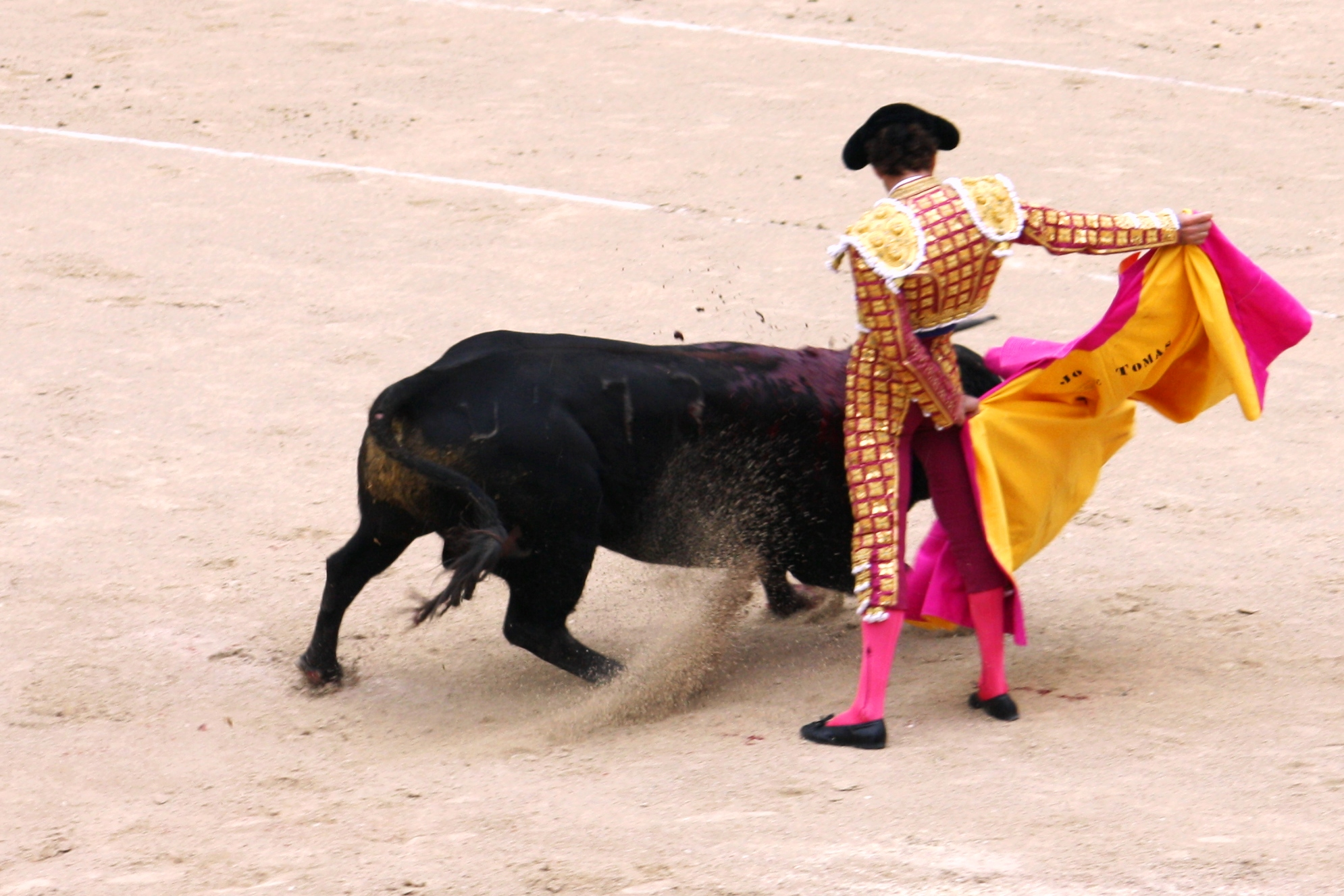 an essay on bullfighting In another passage mr hemingway points out that one of the essentials if a country is to love bull-fights is that the people must have an interest in death the people of castile, he finds, have such an interest in death.