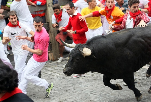 Alexander - far right, hand on bull - in Pamplona (Photo: Reuters /Joseba Etxaburu)