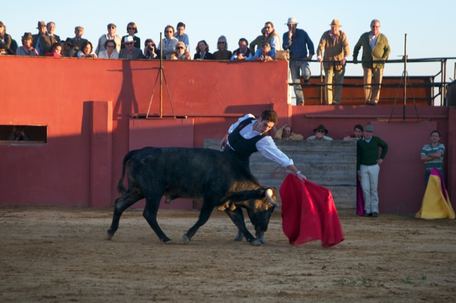 Alexander bullfighting before an exceptional public Behind him in the 'hide', Don Enrique Moreno de la Cova, owner of the 'brand' Saltillo, next to him the legendary breeder of bulls Antonio Miura, the bullfighter Abraham Neiro, the matadors Eduardo Dávila Miura and Rafaelillo. In the audience, his parents in the centre, next to Marquesa of Las Torres de la Prensa, the Duke and Duchess of Segorbe - the Princess Maria da Glória of Orléans-Braganza and Borbón of the Two Sicillies - the Marquis of Caltojar, the Count of Ybarra among others