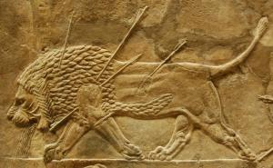 Detail of Assyrian lion hunt by the last great Assyrian king, Ashurbanipal, created for his palace at Nineveh (in modern day northern Iraq) 645–635 BC, now in the British Museum