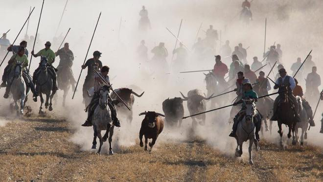 The begining of the bull-run of Cuéllar, Spain's oldest (Photo by Jim Hollander - EPA)